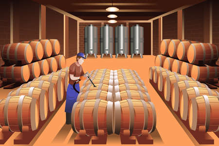 A vector illustration of worker in a winery Çizim