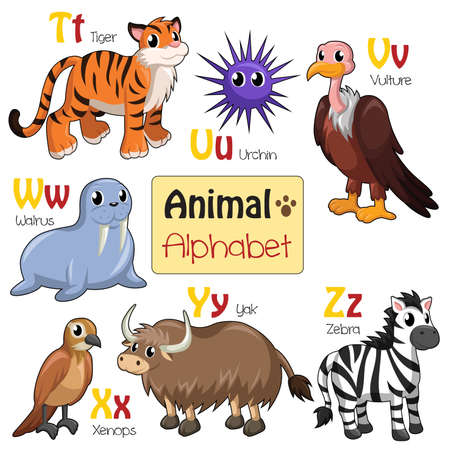 A illustration of alphabet animals from T to Z Vector