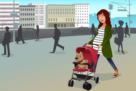 A vector illustration of pregnant woman walking with her dog and a stroller in the city Vector