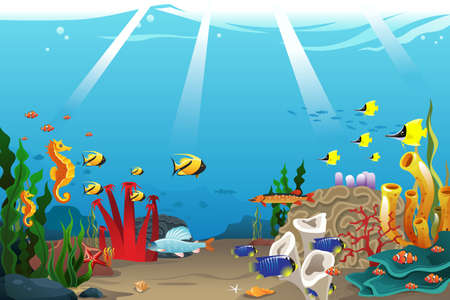 marine scene: A vector illustration of marine life design