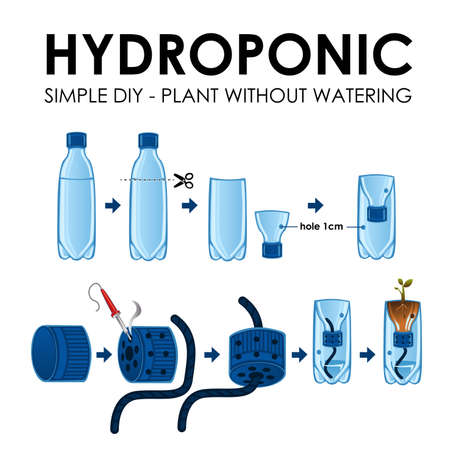 A Vector Illustration Of Diagram Of A Hydroponics Setup Royalty Free