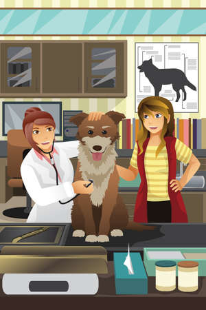 A vector illustration of a veterinarian examining a cute dog Ilustrace