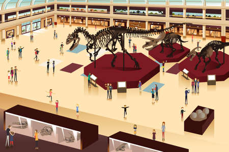 dinosaurs: A vector illustration of scene inside a natural history museum