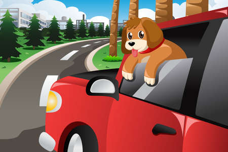 sticking: A vector illustration of dog sticking his face out of the car window