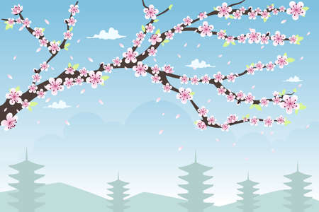 flower clipart: A vector illustration of cherry blossom background design with copyspace