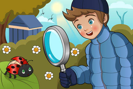 A vector illustration of cute boy looking at ladybug on a leaf using a magnifying glass