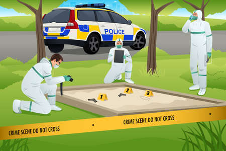 murder scene: A vector illustration of forensics working on a crime scene