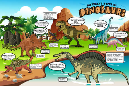 ankylosaurus: A vector illustration of different types of dinosaurs infographic Illustration
