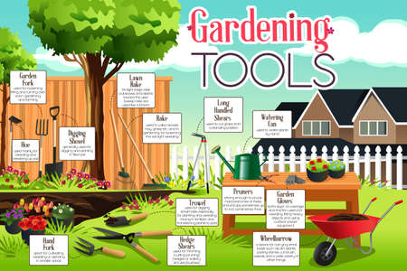 long handled: A vector illustration of gardening tools infographic