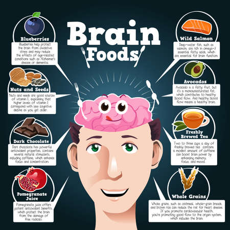 A vector illustration of brain foods infographic Иллюстрация