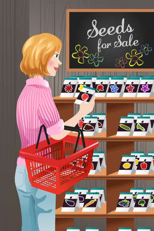 A vector illustration of woman choosing the seed at seed store for gardener Illustration