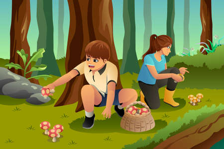 A vector illustration of kids picking up mushroom in the forest Vettoriali