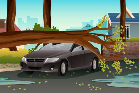 storm damage: A vector illustration of tee on a damage car after heavy rain