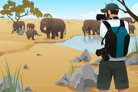 A vector illustration of photographer taking picture on wildlife animals