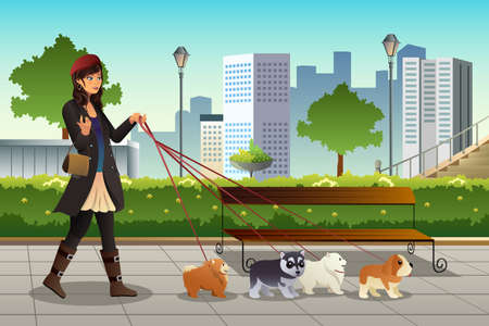 female animal: A vector illustration of beautiful woman walking with her dogs in the city