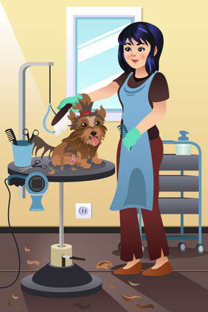 groomer: A vector illustration of a Pet Groomer Grooming a Dog at the Salon Illustration