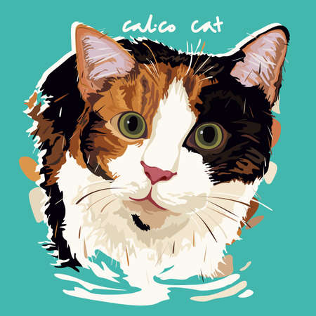 calico: A vector illustration of Calico Cat Painting Poster