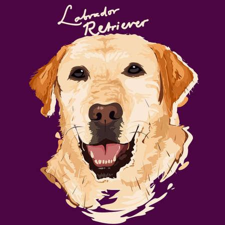 labrador: A vector illustration of Labrador Retriever Painting poster