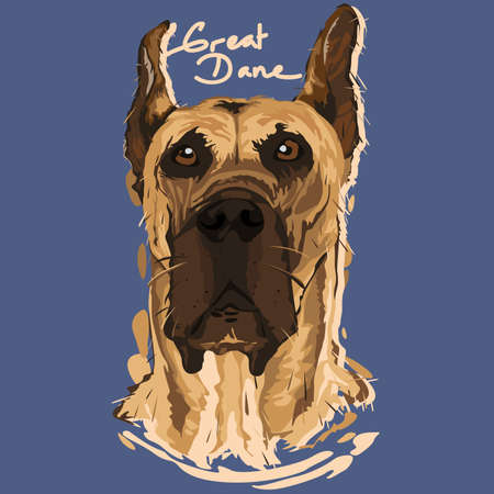 dane: A vector illustration of Great Dane Painting Poster Illustration