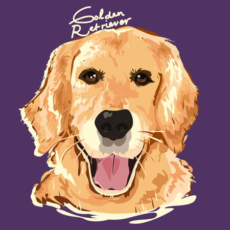 golden retriever puppy: A vector illustration of Golden Retriever Painting Poster