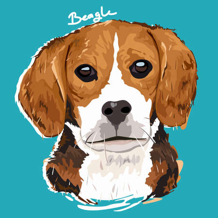 beagle puppy: A vector illustration of Beagle Painting Poster