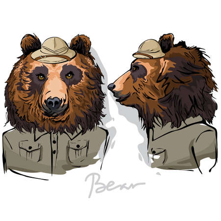 ranger: A vector illustration of Bear Dressed as Human Ranger Illustration