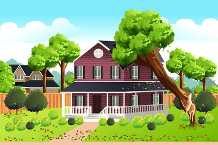 A vector illustration of a Big Tree Falling Into The Roof of a House