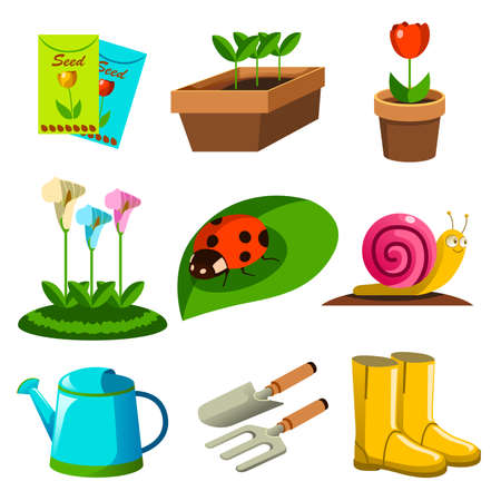 ladybird: A vector illustration of Spring Season Gardening Icons
