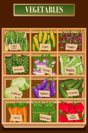 Een vectorillustratie van verschillende soorten groenten in een doos
