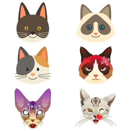 An illustration of different kittens.