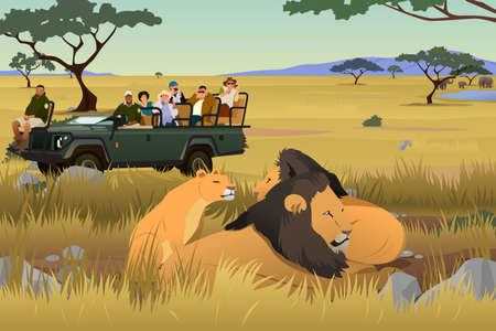 A vector illustration of Tourist on African Safari Trip with lions and trees. Illustration