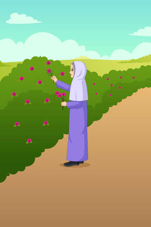 A vector illustration of Muslim Woman Picking Out Flowers in the Garden Иллюстрация