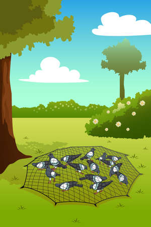A vector illustration of Pigeons Trapped on Ground