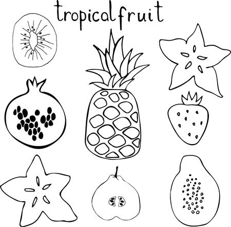 Vector set of tropac fruit - pineapple, pomegranate, kiwi, pear, strawberry, papaya, carambola. Hand drawn black and white illustration. Illustration