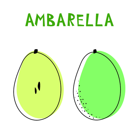 Set of two isolated ambarellas. Vector drawing of rare topucal exotic fruit - ambarella. Spondias dulcis, mombin, pomme cythere, polynesian-plum, yellow plum, otaheite-apple, tahitian quince.