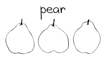 Illustration of three pears. Hand drawn outline sketch.