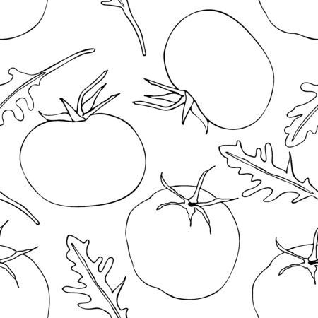 Seamless pattern with tomato and arugula (rucola). Linear white drawing on green backdrop. Ilustrace