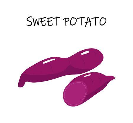 Vector illustration of sweet potato, also yam, batata. Modern flat design.  Illustration