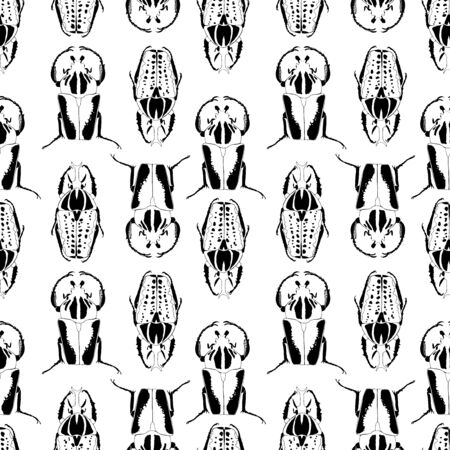 Seamless pattern with monochrome drawing of beetles. Graphic  black and white background. Foto de archivo - 137746980