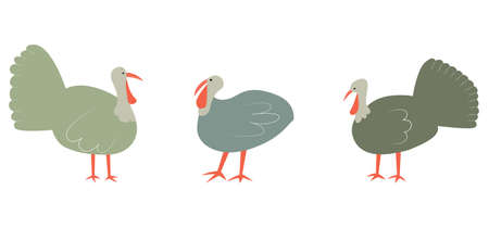 Vector illustration with turkey. Cute cartoon characters.