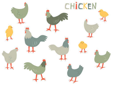 Vector illustration with chiken, rooster and chick. Cute cartoon characters.