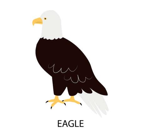 Illustration with eagle - predator bird. Cartoon character. Illusztráció