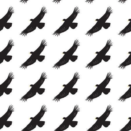 Seamless pattern with condor - bird of prey of america.