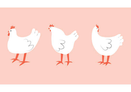 Vector illustration with chicken. Cute cartoon characters.