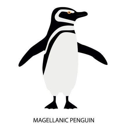 Illustration with magellanic penguin. Cute cartoon character. Australian bird