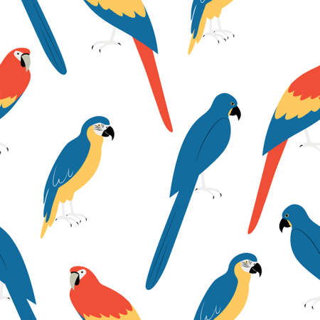 Seamless pattern with macaw. Cartoon character of bird. Animal print