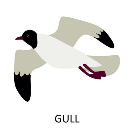 Illustration with sea bird - gull. Cute cartoon character