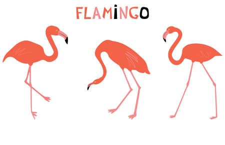 Vector illustration with red flamingo. Cute cartoon character. Flat style.