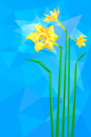 Three spring flowers of narcissus in polygonal style Vector