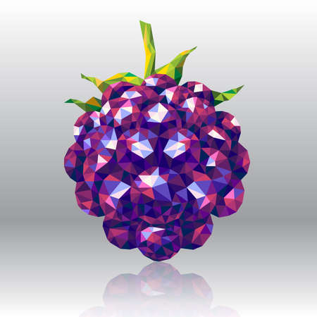 wild berry: Wild Forest Berry Blackberry in Polygon Style